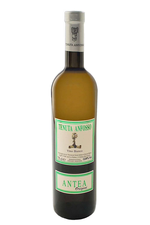 Antea Vino Bianco Anfosso